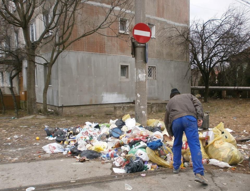 Străzi igienizate după ce timişorenii au reclamat pe Facebook