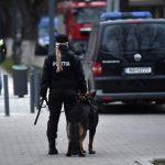 La meciul cu Danemarca vor fi folosiți câini-polițiști care detectează substanțele pirotehnice