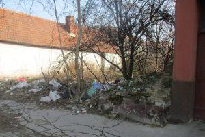 A început verificarea terenurilor din Timișoara care trebuie igienizate de proprietari