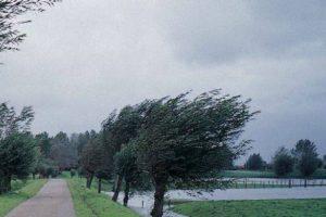 Avertizare meteo. Ploi torențiale şi vânt puternic în toată ţara