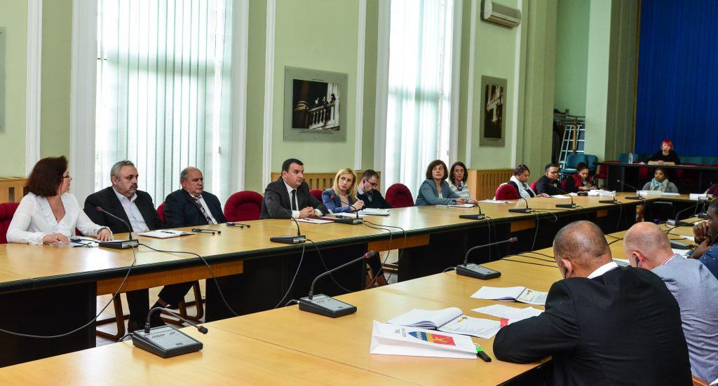 CJ Timiș întâlnire cu delegația din Africa de Sud