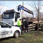 Au încurcat traficul din Timișoara cu căruțele! Prinși cu ajutorul camerelor de supraveghere și lăsați fără atelaje