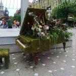 Concerte, show de modă şi multe surprize. Festivalul Timfloralis va avea loc în weekend