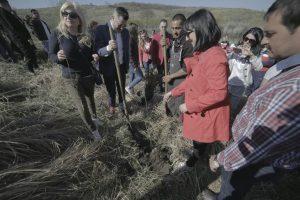 Voluntarii vor planta mii de puieţi într-o comună timişeană