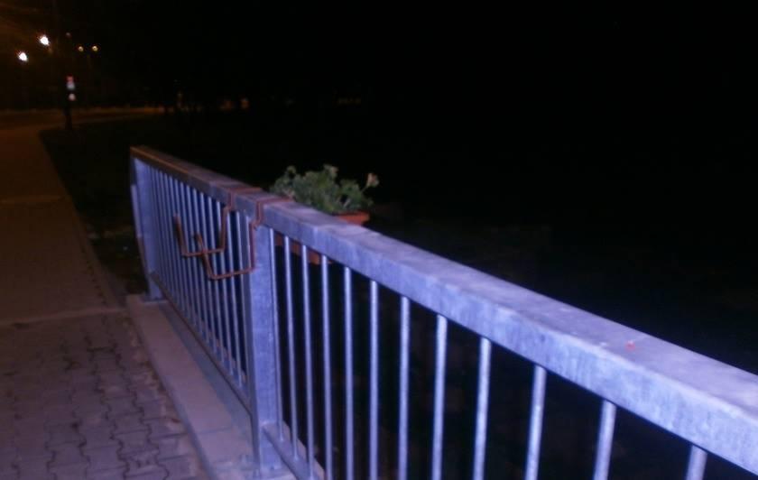 Ce au cu ele? Încă un tânăr prins deteriorând ghivecele de pe Podul Michelangelo!