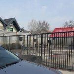 Spălătorie auto amendată în repetate rânduri de Poliţia Locală