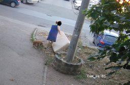 Cei care aruncă deşeuri pe străzi, filmaţi de şi mai multe camere video