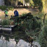Ce fac angajaţii primăriei în timpul liber? Curăţă mizeria lăsată de cei care nu s-au obişnuit cu coşurile de gunoi
