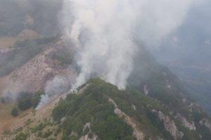 Incendiu în Parcul Național Domogled din județul Mehedinți