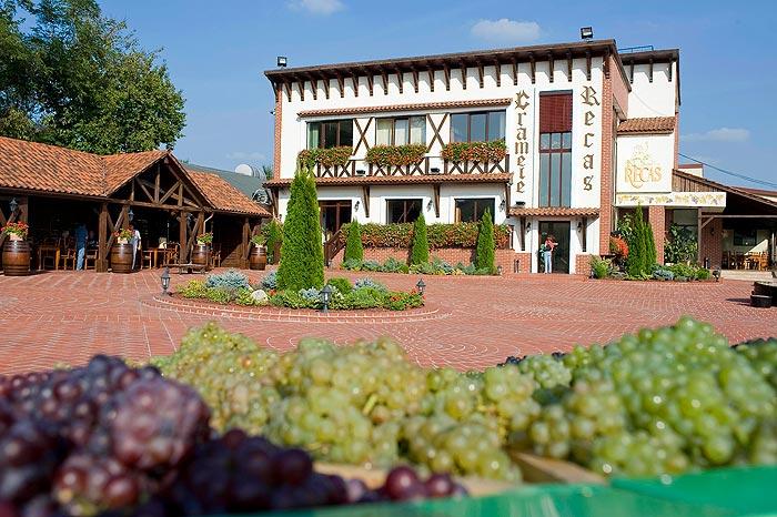 Cramele Recaş şi-au dus vinurile pe rafturile magazinelor Aldi din Marea Britanie