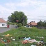 12 timișoreni, amendaţi în ultima săptămână pentru că au aruncat deșeuri pe domeniul public