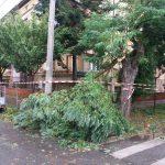 Solidaritate după furtună: sprijin de peste 100.000 euro pentru familiile afectate din Timiș, Arad și Hunedoara