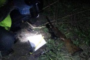Trei bărbați din Pișchia, depistaţi la braconaj, cu o armă deţinută ilegal