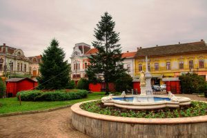 Primăria Lugoj, cheltuieli de 7.000 de lei cu bradul de Crăciun, primit GRATIS!