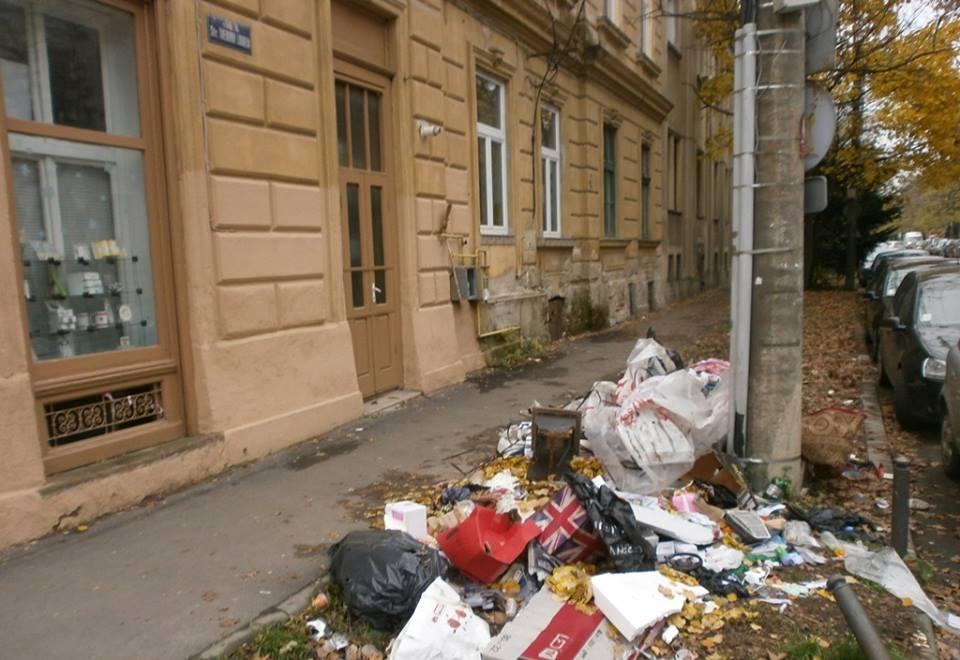 Primăria Timişoara, amendată cu 10.000 de lei pentru deşeurile abandonate pe spaţiul public