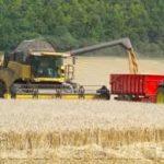 Ploile torențiale nu le-au făcut mari probleme fermierilor din judeţ