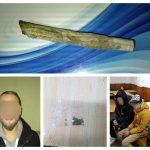 Patru dintr-un foc! Etnobotanice descoperite în zona Dâmbovița și la Gara de Nord din Timișoara