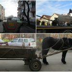 Căruțe pe străzi și multe alte probleme pe capul timișorenilor din Buziașului, Ciarda Roșie sau Soarelui
