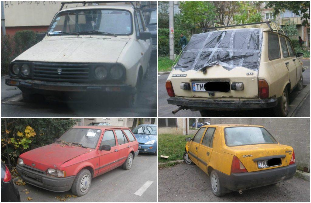 Aproape 500 de rable eliminate de pe străzile Timișoarei, în 2017, după o campanie a Poliției Locale