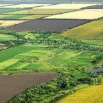 Agricultorii din Banat, afectaţi de secetă