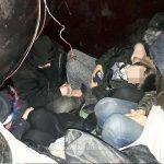 Cinci persoane ascunse printre bagaje într-o remorcă, descoperite la Nădlac