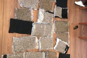 droguri confiscate