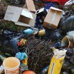 """Începe campania """"Curățenia pentru o oră în comuna Giroc"""""""