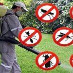 Dezinsecție împotriva țânțarilor și muștelor, în Giroc și Chișoda