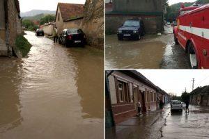 Ploaia a făcut ravagii în vestul țării