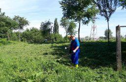 Acțiune civică: un consilier local din Lugoj a ieșit la tuns iarba, pe malul Timișului