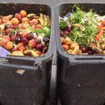 Studiu: 50% dintre consumatorii români risipesc lunar aproape un sfert din totalul produselor alimentare