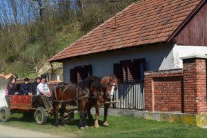 Județul Timiș are o Strategie sectorială de dezvoltare turistică pe următorii zece ani
