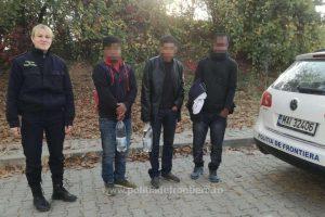 Patru albanezi, opriţi la frontiera cu Serbia. Unde intenţionau să ajungă