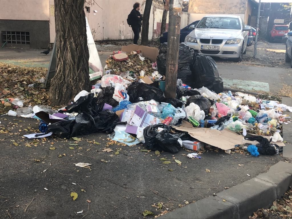 Timișoara are, în sfârșit, o firmă care să se ocupe de curățenia stradală