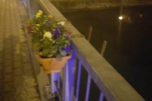 Mai mare ruşinea! Spaniol surprins de polițiștii locali deteriorând jardinierele cu flori de pe Podul Michelangelo