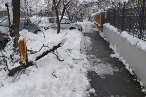Curățați zăpada de pe trotuare, altfel plătiţi amenzi! Poliţia Locală a înmânat sute de somații