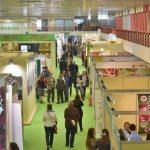 Facilități pentru firmele timișene la misiunile economice organizate în Grecia