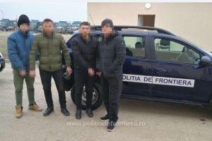 Patru migranţi din Kosovo, opriţi la o frontieră timişeană. Încercau să intre pe jos în ţară