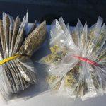 Deţinere de substanţe interzise, sesizată de jandarmi