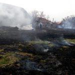 Apelul ISU către timişeni: opriți incendiile de vegetație uscată!