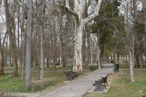 Parcul din Buziaş, reamenajat cu aproape 5 milioane de euro. Va avea fântâni arteziene