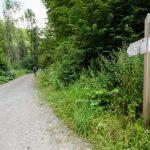 Drumul care duce la staţiunea Moneasa, reparat după aproape 40 de ani
