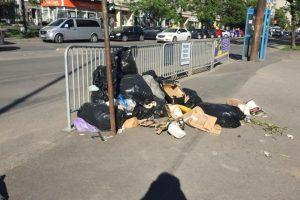 Robu promite sancţiuni aspre pentru cei care aruncă deşeuri pe stradă