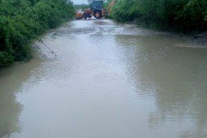 Precipitaţiile abundente le-au dat de lucru pompierilor timişeni