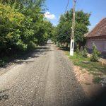 Nume de flori şi de pomi pentru străzile din comuna Biled
