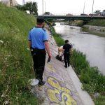 Polițiștii locali și jandarmii, razie pe malurile Begăi, de la Uzina de Apă la Podul Modoș