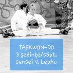 Unde pot merge copiii să facă Taekon-Do