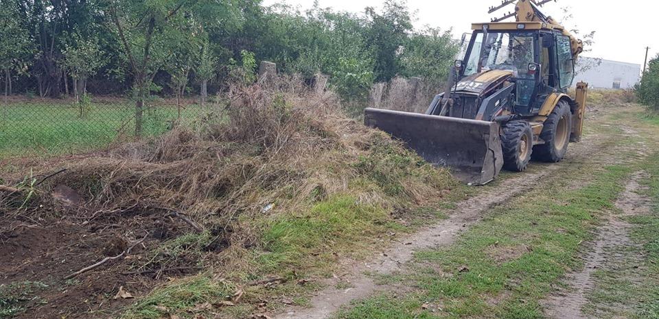 Primăria Săcălaz a început igienizarea terenurilor
