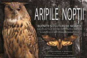 Bufnițe și fluturi de noapte, în expoziţie la Muzeul Național al Banatului