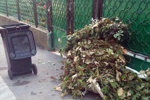 Primăria Timișoara va desemna o firmă care să ridice deșeurile abandonate pe domeniul public